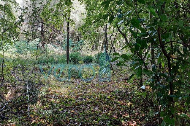 Land, 537 m2, For Sale, Vrbnik