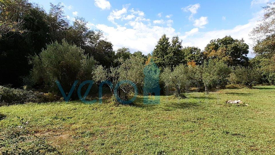 Land, 1385 m2, For Sale, Vrbnik